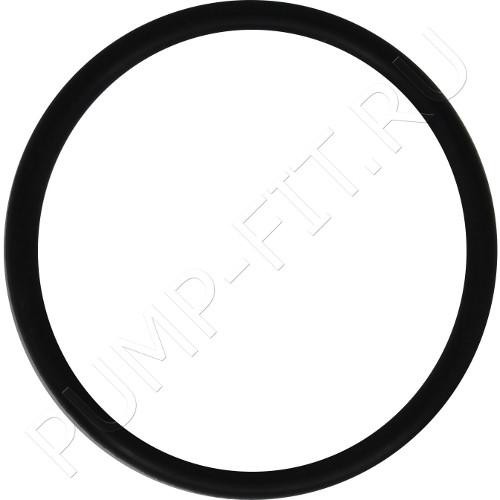 Уплотнительное кольцо 90534