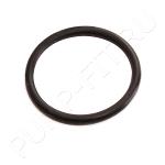 Уплотнительное кольцо 93762